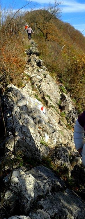 H0001 Lagern Hike Baden Zurich Ridge Walk