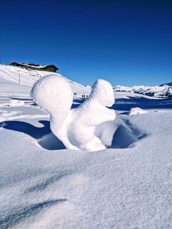 Landquart Schwanzelegg Grusch Winter walk near zurich