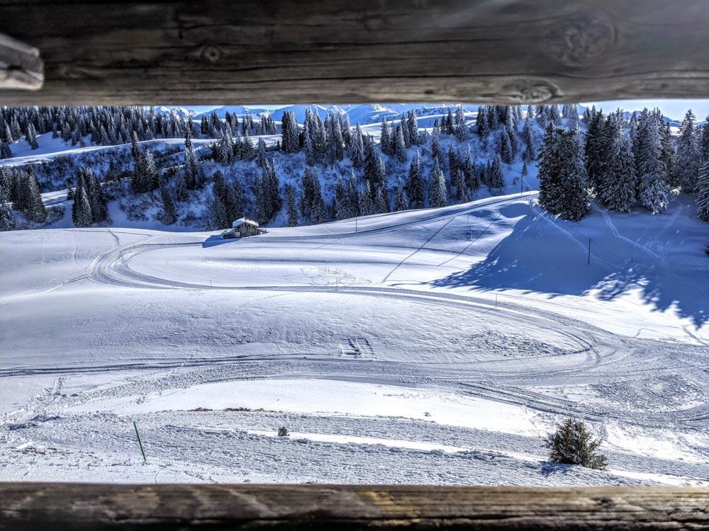 Schwänzelegg Grüsch – easy winter walking and snow sculptures near Chur