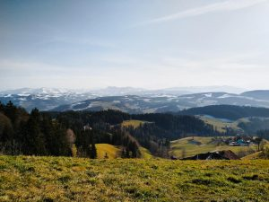 Blaseflue: The Moosegg Panorama Hike in Bern