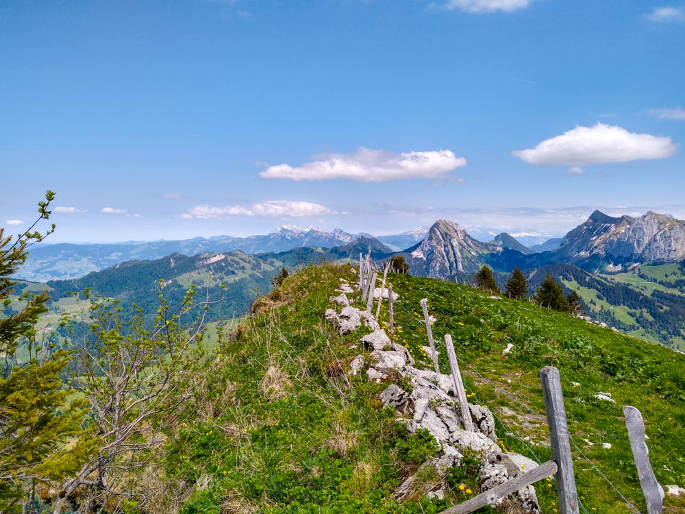 H011_Gross Aubrig_Hiking near Zurich