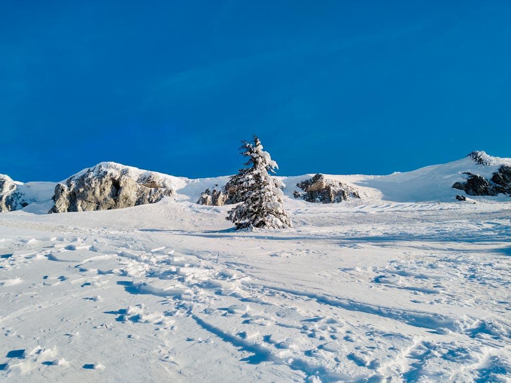Chasseral_Jura Hiking_Winter_Summer