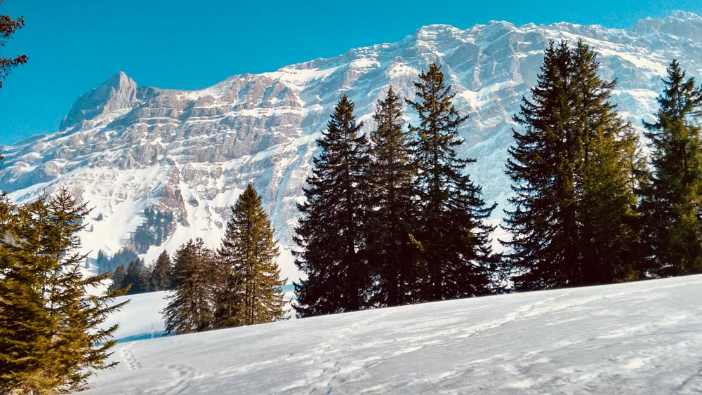 Kronberg snowshoes winter hiking near Zurich