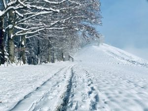 Read more about the article Chrüzhubel: Winter Hiking near Lucerne