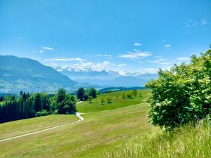 Read more about the article Rooterberg – Switzerland's Smallest Mountain